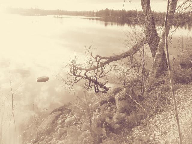 Holmsjön