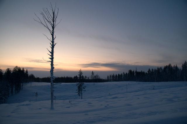 Vinterlandskap, Lidbacken