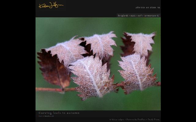 Fotobloggen